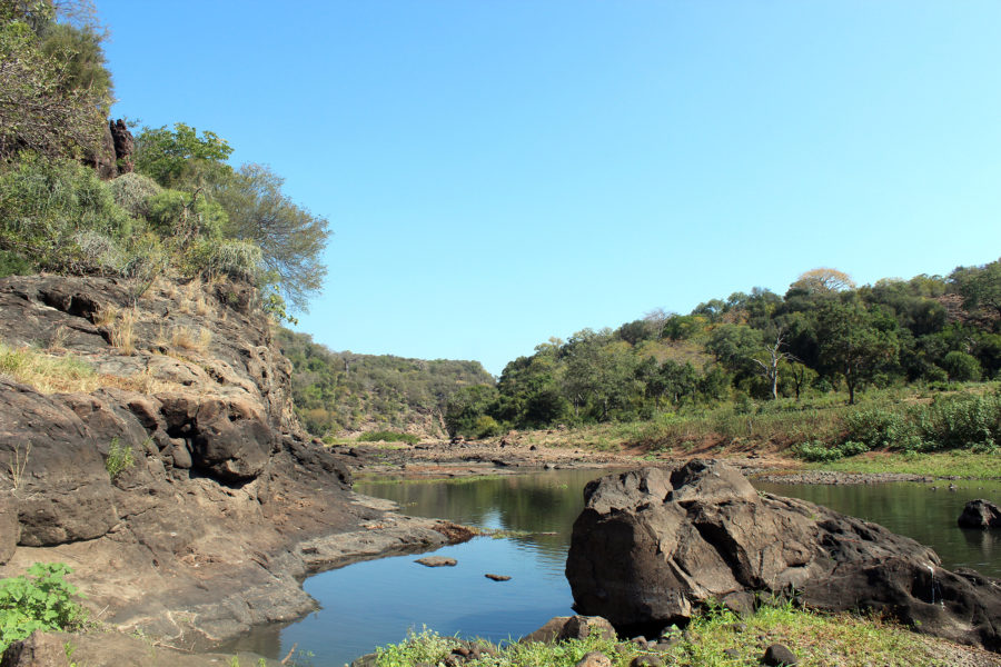 Wenner-Gren Foundation funds excavations in new Middle and Late Stone Age sites in southern Mozambique
